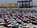 Xe nhập dễ thở vì Chính phủ đề nghị kiểm tra, gỡ khó cho doanh nghiệp ô tô?