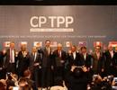 11 quốc gia châu Á-Thái Bình Dương ký kết CPTPP