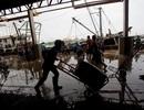 Thái Lan: Trả lương cho ngư dân nhập cư qua tài khoản ngân hàng