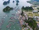 """Yêu cầu 3 tỉnh có đặc khu kinh tế chặn tình trạng """"thổi"""" giá đất"""