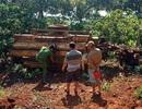 Lật xe công nông chở gỗ, 1 người chết 2 người bị thương