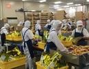 Tổng cục Hải quan khuyến cáo kiểm soát nhập khẩu sản phẩm dinh dưỡng
