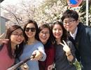 Trải nghiệm Nhật Bản mùa cao điểm hoa anh đào