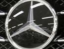 Ăn trộm 12 chiếc logo xe sang để được nhiều like trên mạng xã hội