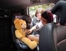 GM Việt Nam cổ động việc thắt dây an toàn cho trẻ em trên ô tô