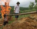 Dân không đồng tình với phương án xử lý giếng nước nhiễm dầu hỏa