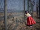 """Khát khao ở tuổi """"gần đất xa trời"""" của những người Triều Tiên ly tán"""