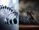 Chỉnh sửa gen có thể tạo ra một thế hệ doping mới cho các vận động viên