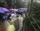 Hàng vạn người đội mưa về Đền Hùng dự quốc giỗ