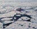 Nồng độ vi nhựa kỷ lục được tìm thấy ở Bắc Cực