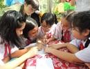 TPHCM: Cấm trường học tổ chức lớp chọn