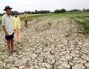 Thủ tướng: Nước Mekong suy kiệt tác động tiêu cực đến Đồng bằng sông Cửu Long