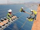 Đắk Nông xây nhà máy điện mặt trời hơn 1.100 tỷ đồng