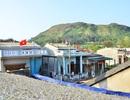 """Tháng 4, """"vàng trắng"""" phủ kín các mái nhà trên đảo Lý Sơn"""
