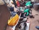 Bị xử phạt gần 360 triệu đồng vì tàng trữ nhiều voọc, khỉ để nấu cao