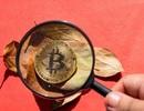 """Sàn giao dịch tiền ảo lớn nhất Hàn Quốc bị """"sờ gáy"""" vì gian lận"""