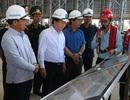 Phó Thủ tướng Trịnh Đình Dũng: Tiếp tục hỗ trợ người dân khôi phục sản xuất
