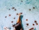 """Đẹp mê hồn """"vương quốc sao biển"""" ngay ở Phú Quốc"""