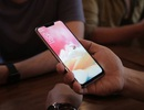 Asus đưa smartphone tầm trung Zenfone 5 về Việt Nam, giá 7,99 triệu