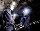 88 công việc cấm tuyển dụng lao động là người chưa thành niên