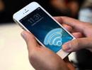 Nếu Wi-Fi được phủ sóng toàn thành phố thì trông sẽ như thế nào?