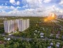 Đô thị sáng tạo: Tiếp sức mạnh mẽ cho sự phát triển bất động sản khu Đông