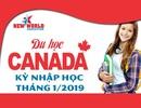 Ghi danh ngay kỳ nhập học Tháng 01/2019 bậc học THCS & THPT tại Canada