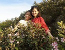 Đồi sim tím lịm bậc nhất xứ Nghệ: Dân teen đổ xô 'seo phì' giữa nắng
