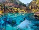 10 công viên quốc gia nổi tiếng nhất Trung Quốc