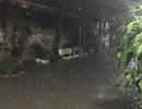 """Chủ tịch TP Hà Nội chỉ đạo """"giải cứu"""" khu dân cư cứ mưa là bì bõm ngập lụt!"""