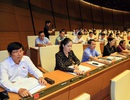 Quốc hội thông qua bội chi ngân sách năm 2016 hơn 248 nghìn tỷ đồng