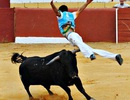 Võ sĩ đấu bò thiệt mạng khi chạy lại giải cứu người chơi