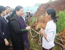 Phó Chủ tịch Quốc hội thăm người dân vùng biên giới Quảng Trị