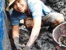 Trai nghèo nuôi lươn đồng, mỗi đợt bán 5 tạ, lời 45 triệu đồng
