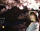 Nữ du học sinh Việt tại Nhật khoe sắc trong veo dưới tán anh đào