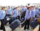 Thị trường lao động Đài Loan dẫn đầu về thu hút lao động Việt