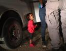 """Gặp tác giả của bức ảnh """"Bé gái gào khóc ở biên giới Mỹ"""" đang gây sốt trên mạng xã hội"""
