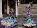 Choáng với quốc phục khổng lồ nặng 20kg của đại diện Việt Nam tại Miss Asia World