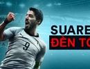 """Cơ hội đền tội cuối cùng của """"kẻ phản diện"""" Luis Suarez"""