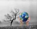 Tăng cường mở rộng đào tạo về kinh tế biến đổi khí hậu