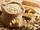 Lợi ích tuyệt vời của yến mạch nguyên cám đối với sức khỏe