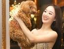 Hoàng Hải Thu đẹp lộng lẫy đem thú cưng đi casting The Face