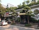 Hà Nội: Nhà hàng, bãi xe vẫn hoạt động tấp nập trên mương Phan Kế Bính