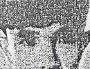 Gã thanh niên mang nhiều vỏ bọc ở Đồng Nai