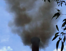 """Bình Định: Nhà máy """"nhả khói"""" đen tra tấn người dân?"""