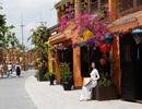 1001 điểm check-in xinh lung linh cho mọi nhà tại Quảng Nam