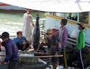 Hỗ trợ hơn 61 tỷ đồng giúp ngư dân vươn bám biển