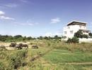 TPHCM: Ngành Thanh tra cần quan tâm mức giá đền bù đất đai cho người dân