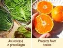 Điểm danh những loại thực phẩm giàu collagen giúp trẻ hóa làn da