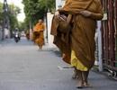Báo động tình trạng gần một nửa nhà sư Thái Lan mắc bệnh béo phì